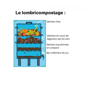schema_lombricompost_carré