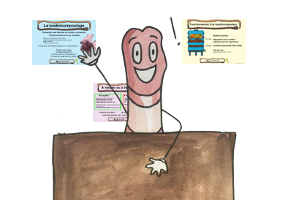 Animations, Ateliers sur le lombricompostage